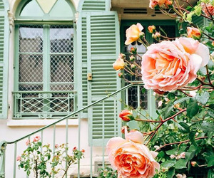 balcony, flowers, and vintage image