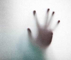 hand and photography image