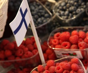 berries, finland, and flag image