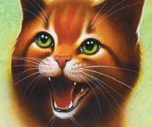 warrior cats image