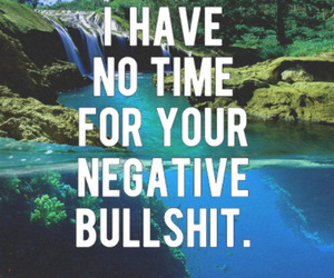 bullshit, quote, and text image