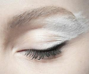white, eye, and eyes image