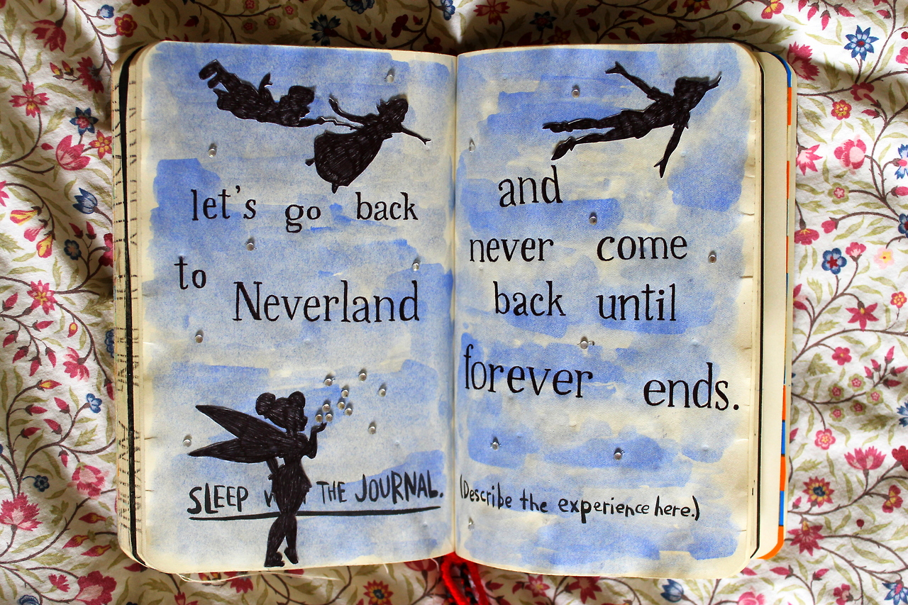 Image result for wreck it journal