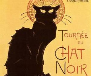 black cat, cat, and le chat noir image