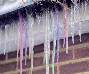 ice, icicle, and winter image