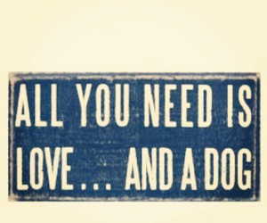 love, dog, and quote image