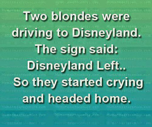 funny, joke, and blondes image