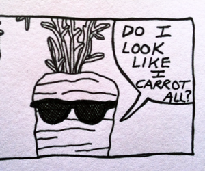 carrot and funny image