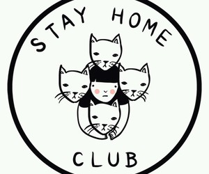 cat, home, and club image