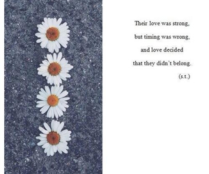 love, quote, and flowers image