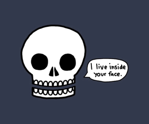 skull, funny, and face image
