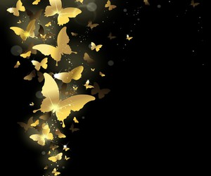 butterfly and golden image