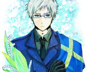hetalia, sweden, and anime image