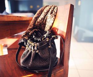 fashion, alexander wang, and bag image