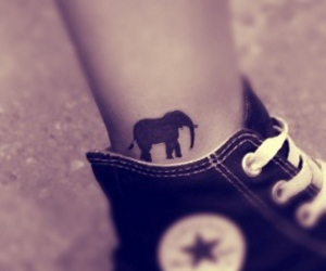 tattoo, elephant, and converse image
