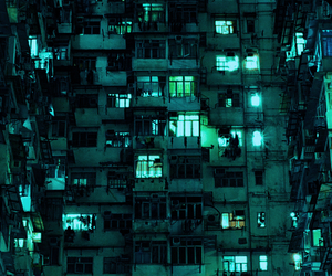 light, night, and green image