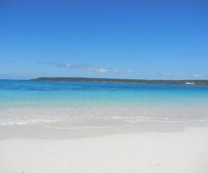 beach, cruise, and Island image