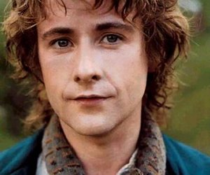 pippin, hobbit, and LOTR image