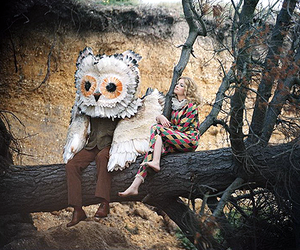 owl and tree image