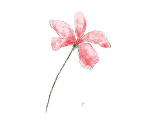 art, blossom, and flower image