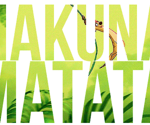 hakuna matata, no, and quote image