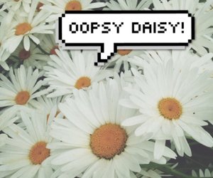daisy and oopsy image