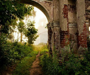 nature, old building, and photography image