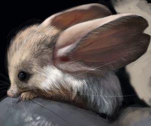 cute, animal, and ear image
