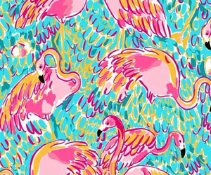 blue, flamingo, and pink image
