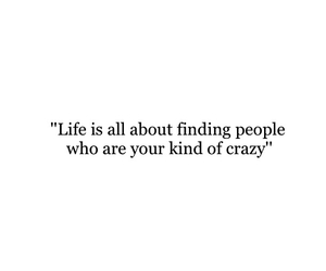 crazy, life, and friends image