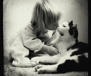 black and white, cat, and child image
