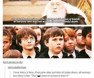 harry potter, funny, and hogwarts image