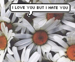 hate, hipster, and wallpapers image