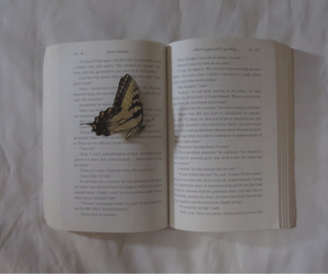 book, photo, and butterfly image