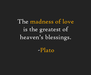 love, madness, and heaven image