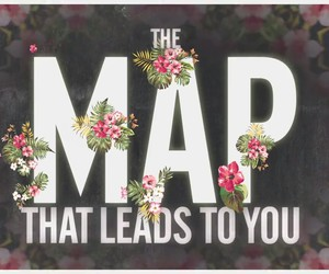 beautiful, flowers, and Lyrics image