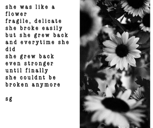 black and white, daisies, and grunge image