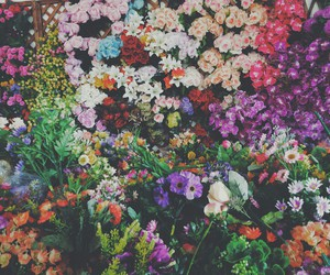 colourful, floral, and tumblr image