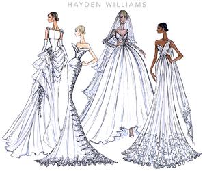 hayden williams image
