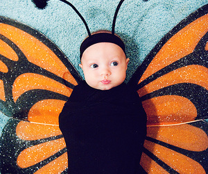 butterfly, baby, and cute image