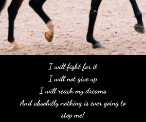 competition, dressage, and fight image