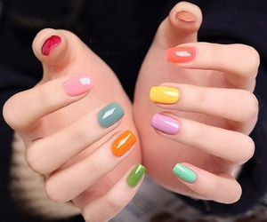 nails, colors, and nail polish image