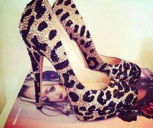 shoes, heels, and leopard image