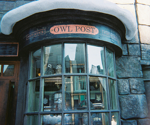 harry potter, owl post, and owl image