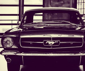 mustang, car, and ford image