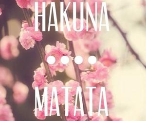 hakuna matata, flowers, and pink image