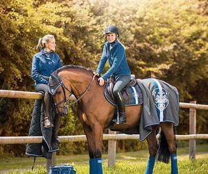 beautiful, fashion, and horses image