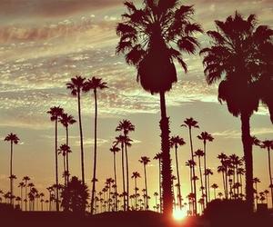 summer, sun, and sunset image