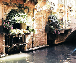 venice, flowers, and vintage image