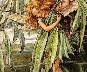 faerie image